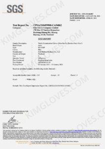 KG ASTM D6319-19 Nitrile NT1 Test report