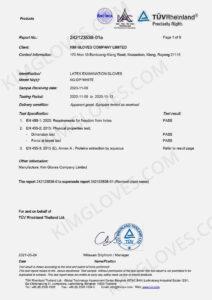KG EN 455 Latex DP1 Test report-01